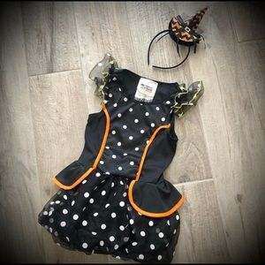 GIRL'S | Mini Witch Costume